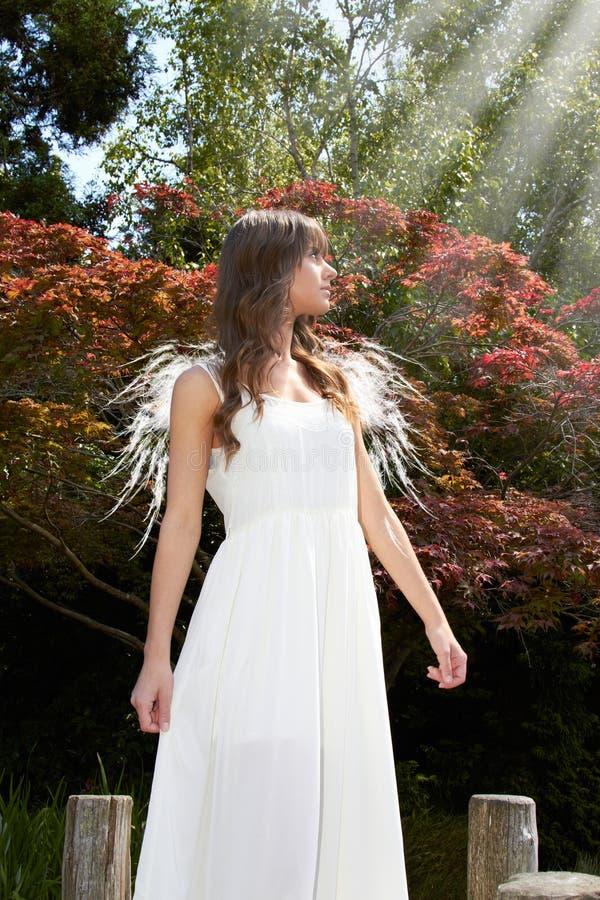 Engel in tuin stock afbeelding