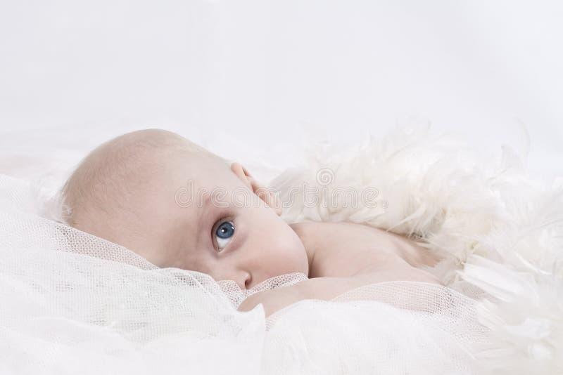 Engelachtige baby stock foto's