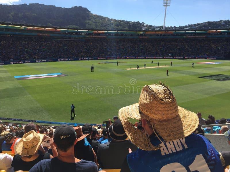 Engeland V de Wereldbeker van Nieuw Zeeland stock foto's