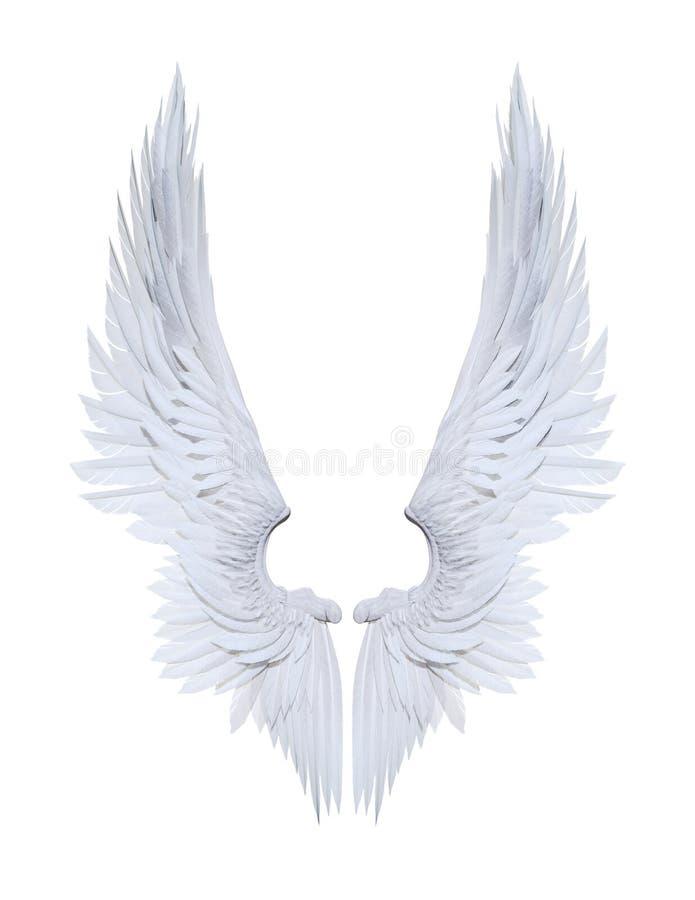 Engelenvleugels, wit die vleugelgevederte op wit wordt geïsoleerd royalty-vrije illustratie