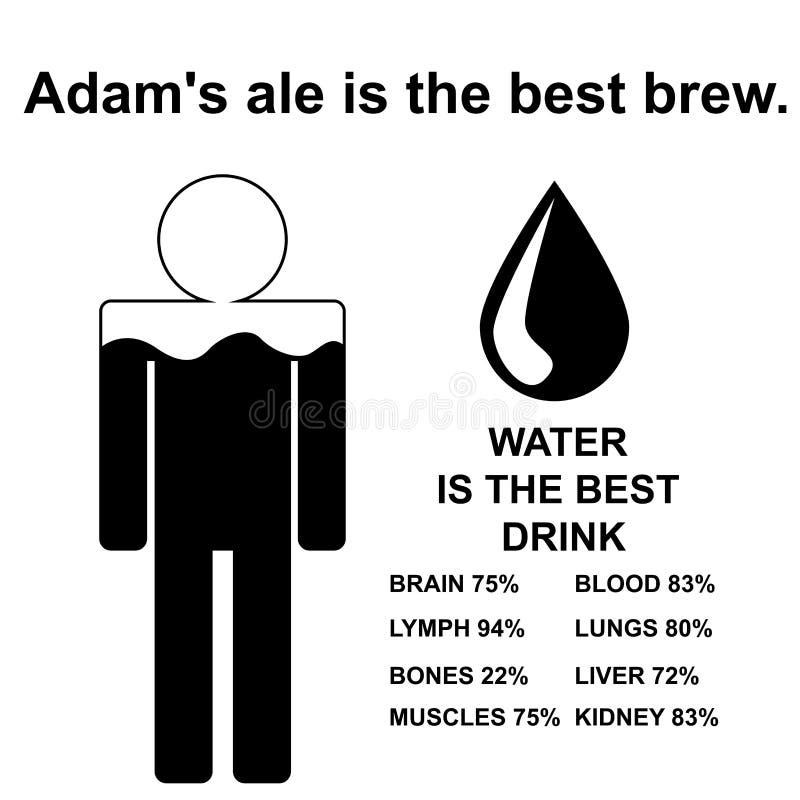 Engels gezegde: Adams het aal is het beste brouwt royalty-vrije illustratie