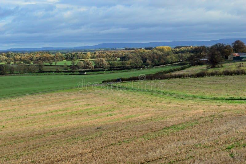Engels platteland in Hogere Eden Valley stock foto's