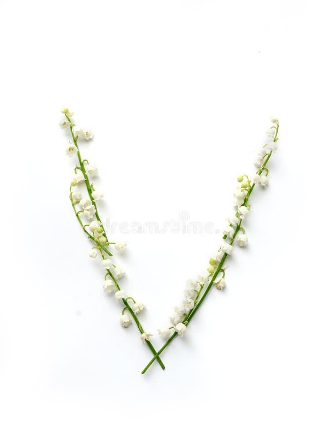 Engelse brief V in het alfabet van bloemenklokken Kalligrafie het van letters voorzien stock fotografie