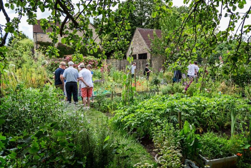 Engelse dorps plantaardige toewijzing in Frome, Somerset, het UK royalty-vrije stock foto's