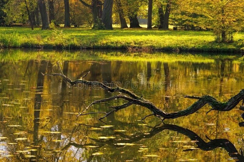 Engelse Gronden van meer Woerlitz stock afbeelding