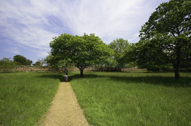 Engelse land ommuurde tuin met paardekastanjeboom royalty-vrije stock foto