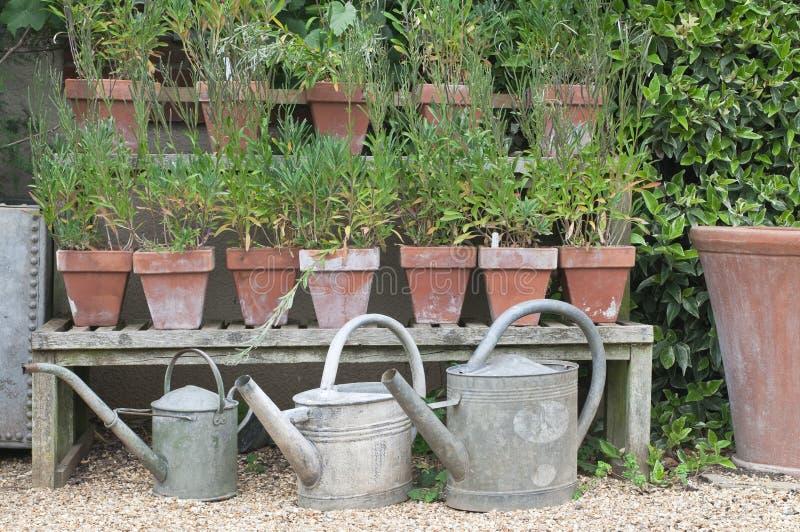 Engelse plattelandshuisjetuin royalty-vrije stock fotografie