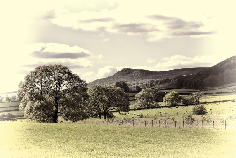 Engelse plattelandsscène stock fotografie