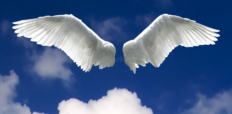 Engelsflügel mit Himmelhintergrund stockfoto
