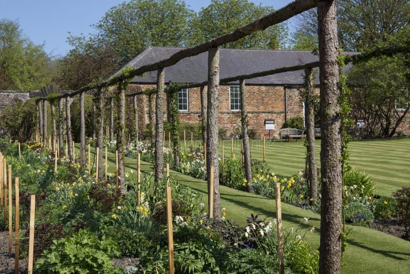 Engelsk landsträdgård - Yorkshire - England arkivfoton