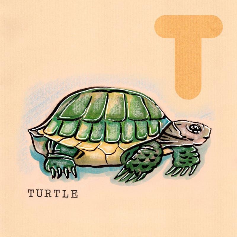 Engelskt alfabet, sköldpadda stock illustrationer