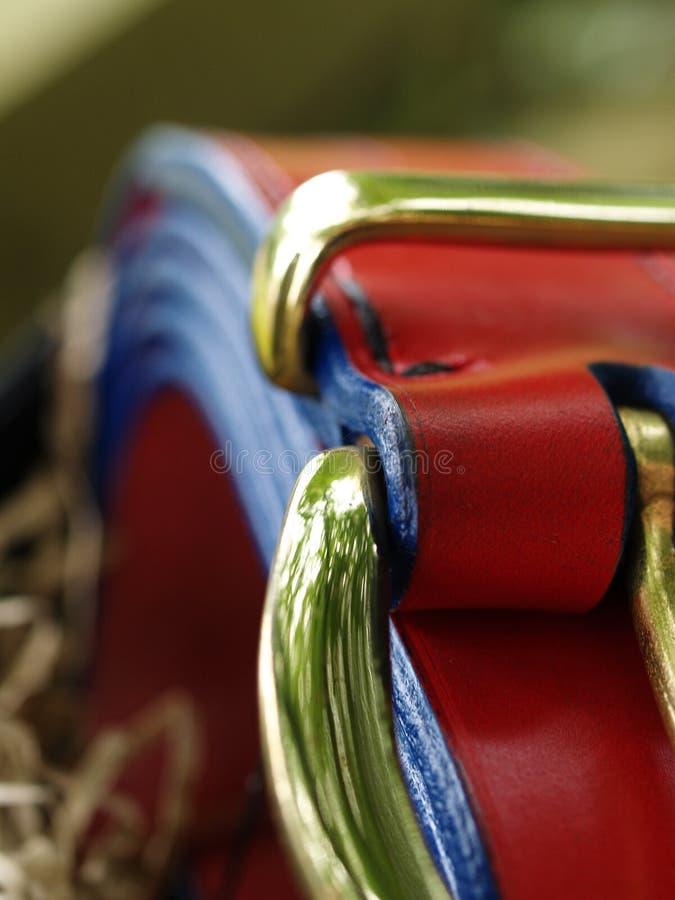 Engelskt läderbälte fotografering för bildbyråer