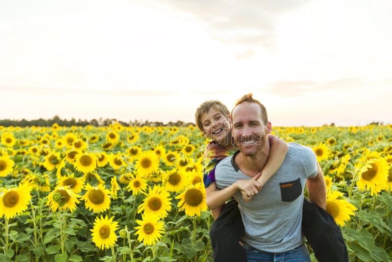 Engendre con el niño en un campo de girasoles florecientes, día del ` s del padre fotografía de archivo