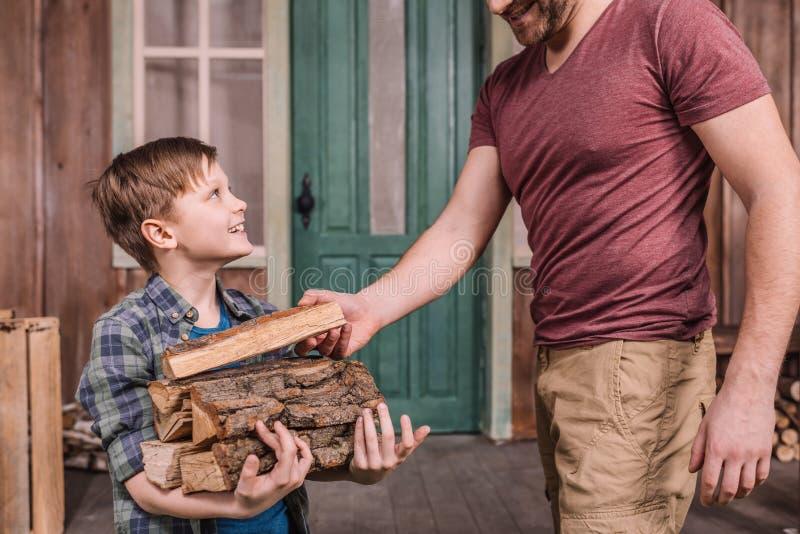 Engendrez avec le petit fils rassemblant les rondins en bois à l'arrière-cour photo libre de droits