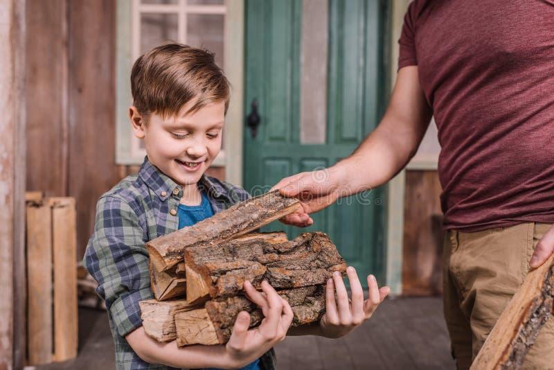 Engendrez avec le petit fils rassemblant les rondins en bois à l'arrière-cour photo stock