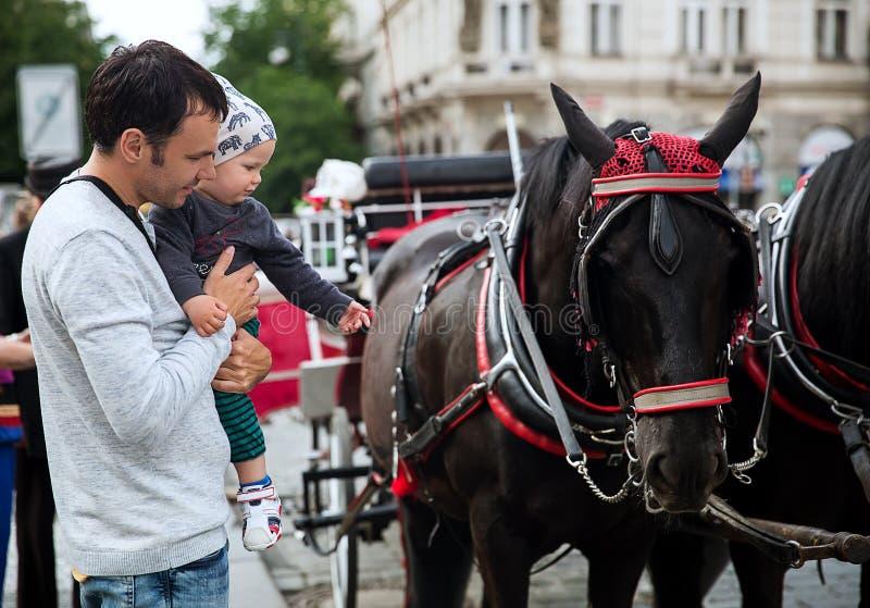 Engendrez et il regard de fils au chariot de cheval à la vieille place à Prague photographie stock