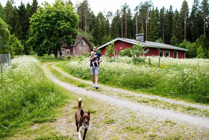 Engendrez la marche son fils dans un jardin finlandais de cottage photos stock