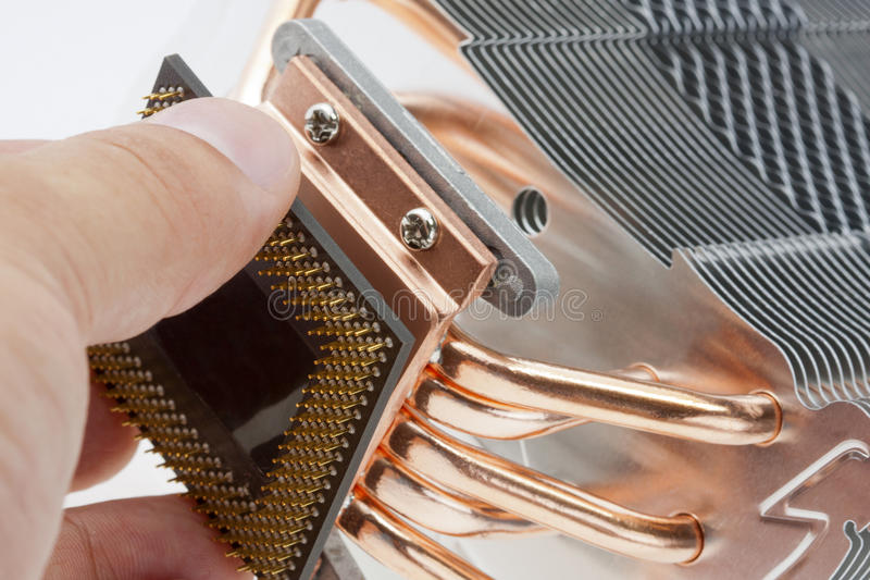 Engineer installing computer processor royalty free stock image