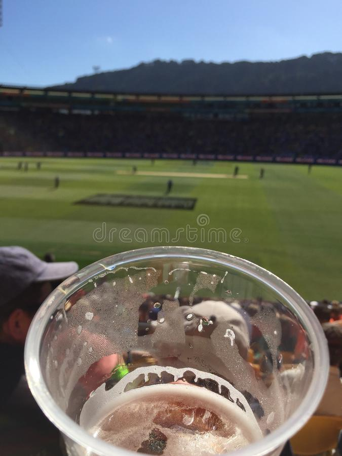 England V New Zealand World Cup royalty free stock image