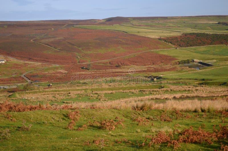 Englands ostatni wielki pustkowie Durham doliny fotografia royalty free