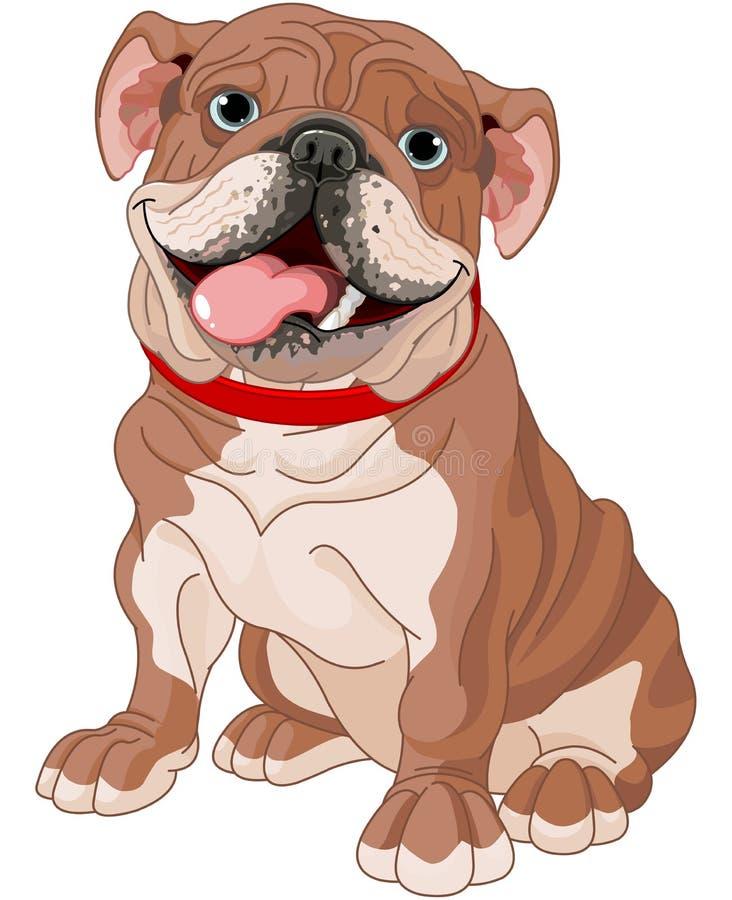 Englische Bulldogge lizenzfreie abbildung