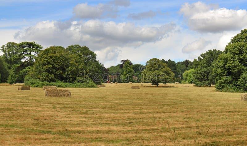 Englische landwirtschaftliche Landschaft lizenzfreies stockfoto