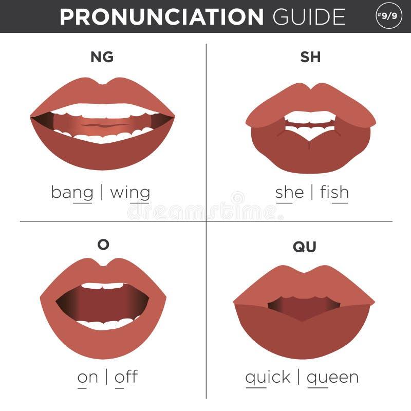Englische Sprachaussprache-¢¢VISUAL GUIDE''-Testblatt lizenzfreie abbildung