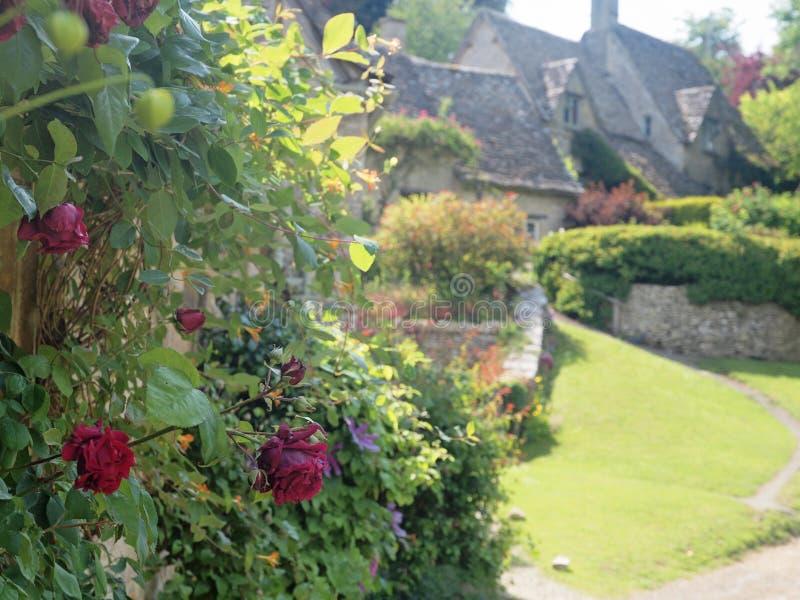 Englischer Häuschen-Garten mit Rosen stockfotografie