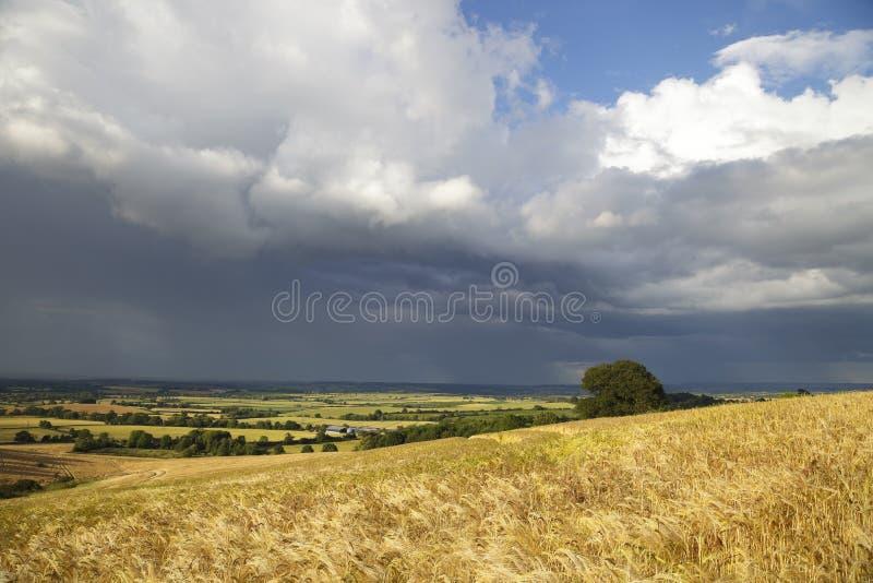 Englisches Wetter stockfotografie