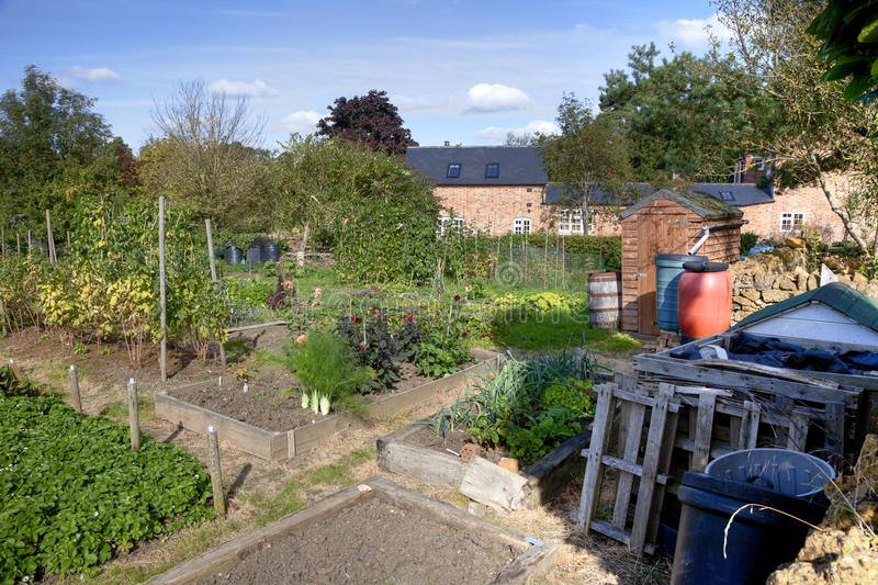 English Allotment royalty free stock photography