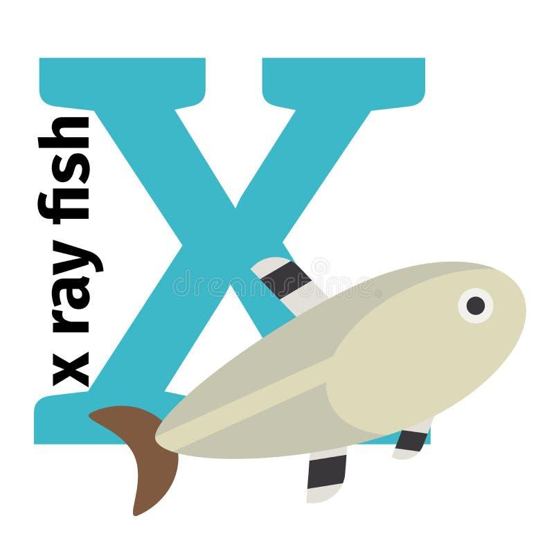 English animals zoo alphabet letter X royalty free illustration