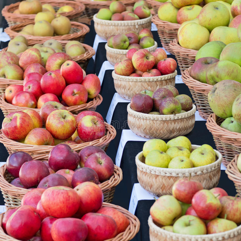 Free English Apples On Show In Autumn Stock Image - 94008041