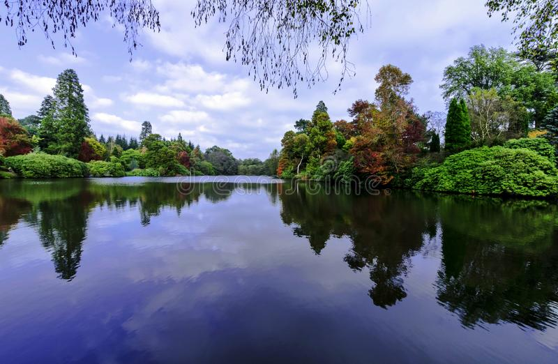 English autumn with lake and trees - Uckfield, East Sussex, United Kingdom. English autumn with lake and trees in Uckfield, East Sussex, United Kingdom royalty free stock image