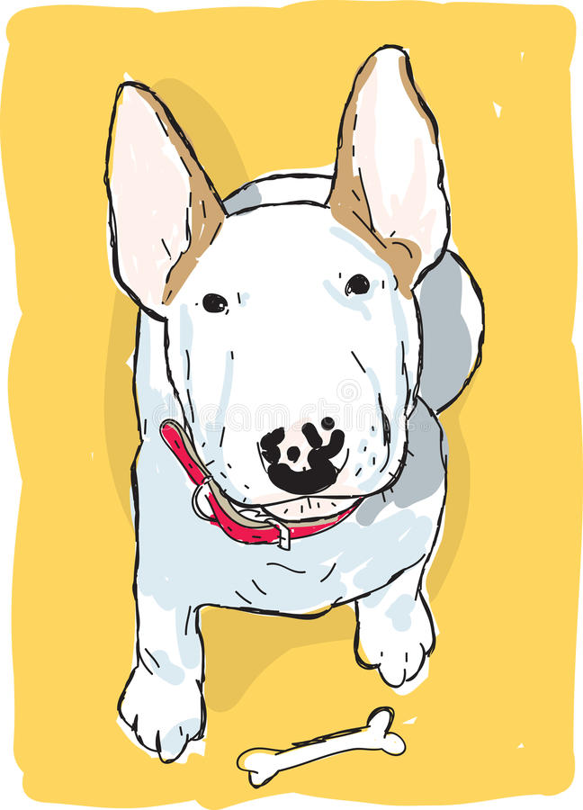 Download English bull terrier stock illustration. Image of pure - 28266514