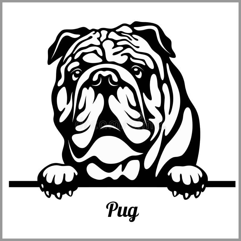 Free English Bulldog - Peeking Dogs - Breed Face Head Isolated On White Royalty Free Stock Photo - 142312345