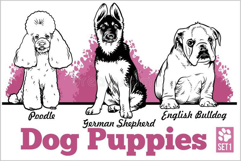 English Bulldog, Poodle and German Shepherd - Dog Puppies. Vector set. Funny dogs puppy pet characters different breads stock illustration