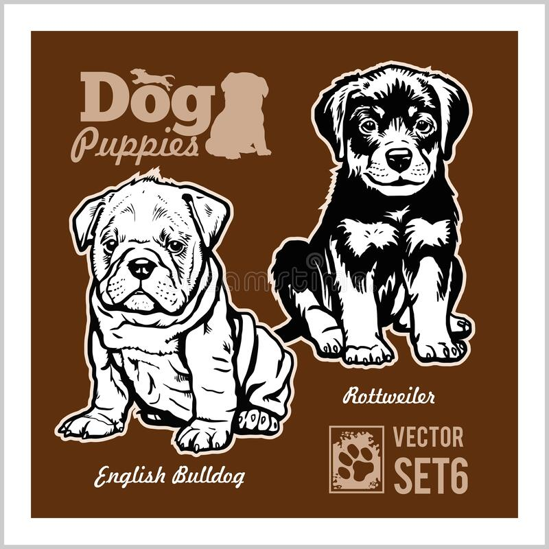 English Bulldog and Rottweiler - Dog Puppies. Vector set. Funny dogs puppy pet characters different breads doggy vector illustration