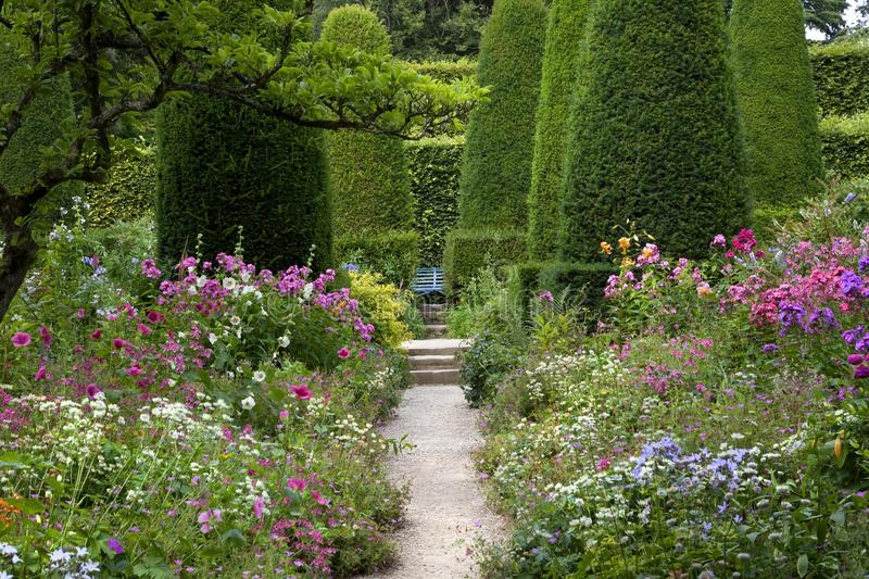 English cottage garden. With clipped Yew trees stock images