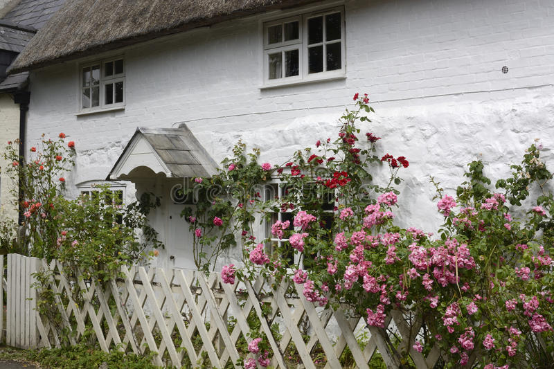 English country cottage. Avebury. England. Typical old English country cottage with thatched roof and whitewash stone walls and rose garden. Avebury. Wiltshire royalty free stock photo