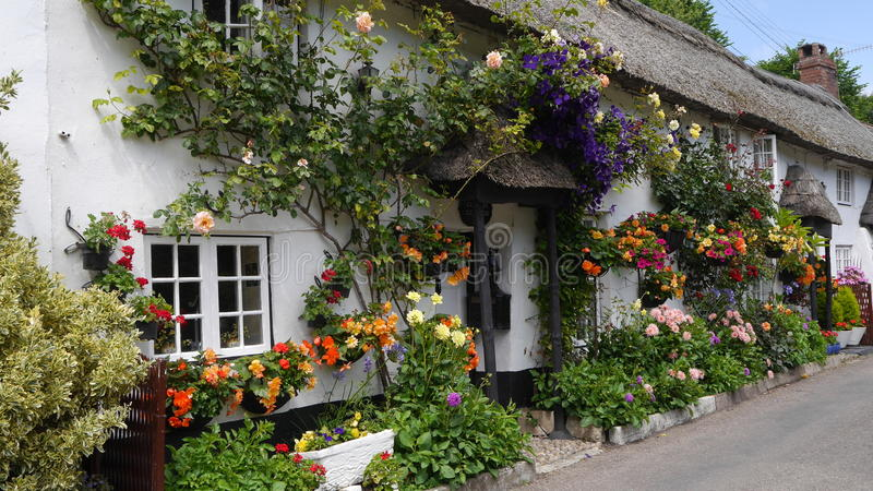 English country cottage decked with flowers stock images