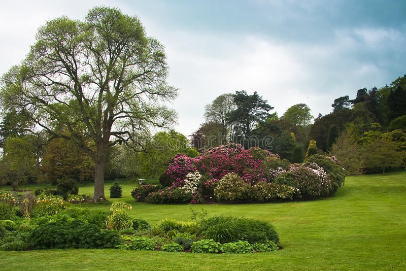 English country formal garden. Country estate garden surrounded by ornamental trees shrubs lawns and woodland. Killerton house royalty free stock images