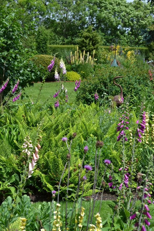 English Country Garden. A perfectly designed blend of perennials and woody plants in the English country garden royalty free stock photos