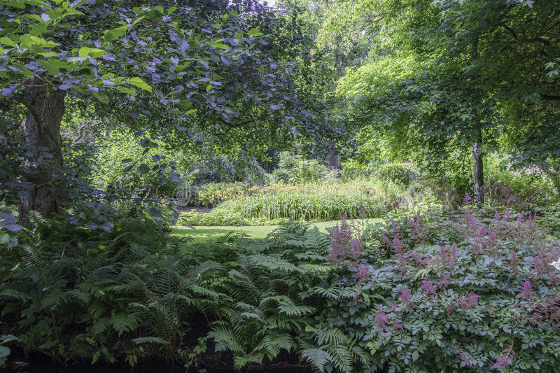 English country garden. Typically beautiful English country garden royalty free stock photography