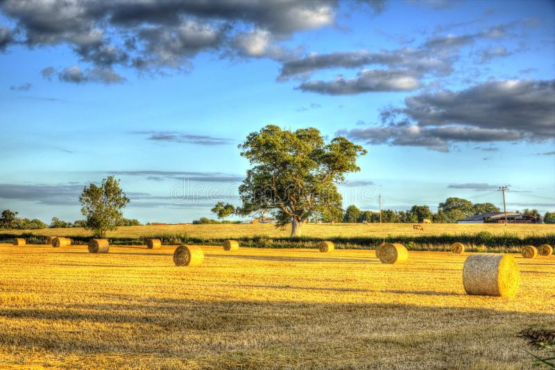 English country scene hay bales at harvest time in HDR. English country scene hay bales trees and clouds at harvest time in HDR royalty free stock images