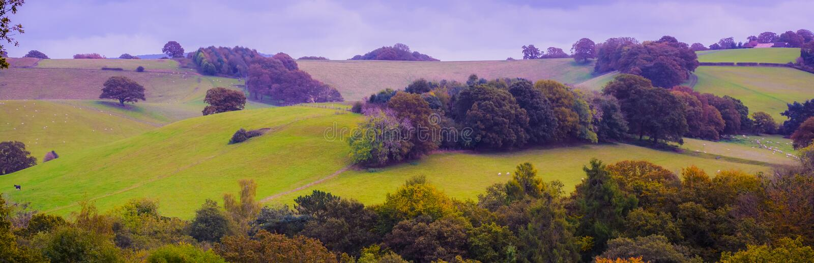 English Countryside. A picture of the British countryside at the beginning of the autumn (Godalming stock photography