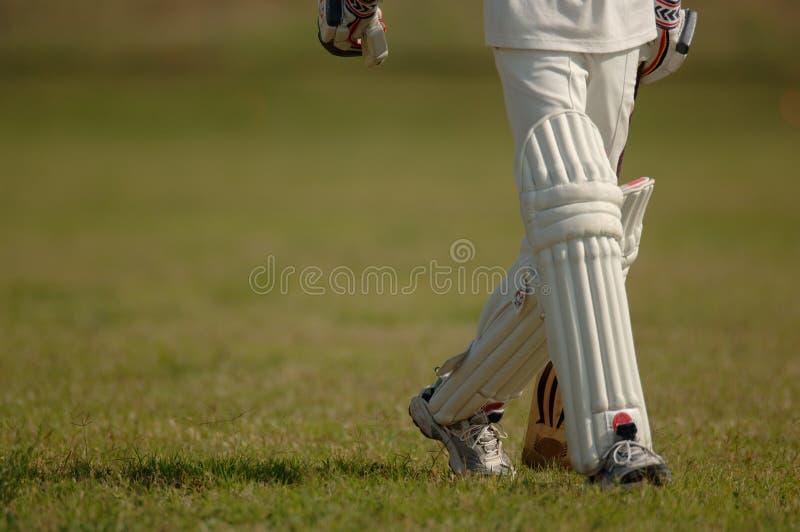 English Cricket. Cricket match stock photos