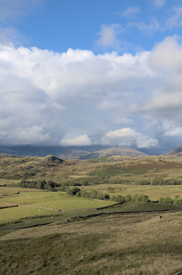 Download English farmland stock photo. Image of hill, countryside - 2975052