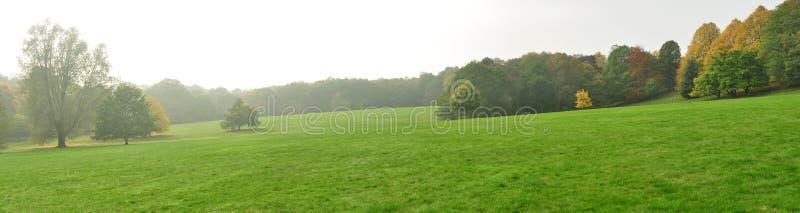 Download English landscape stock image. Image of autumn, vegetation - 27393397