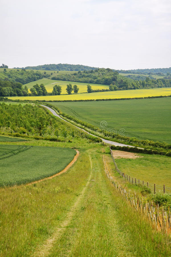 Download English Landscape With Farm Track Stock Photo - Image: 14633676