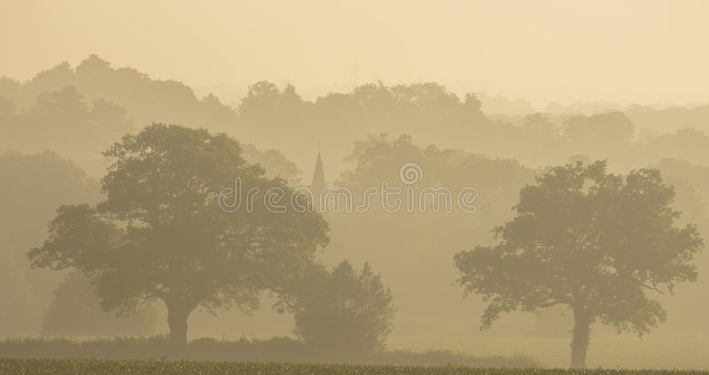 English landscape with fog. A photo of the English landscape with fog stock photography